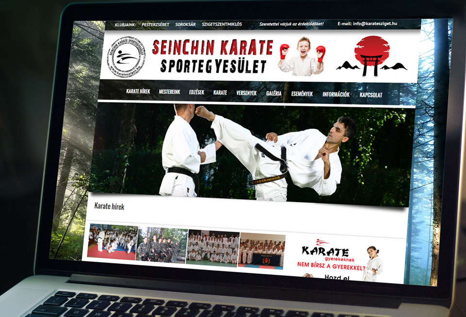 seinchin karate
